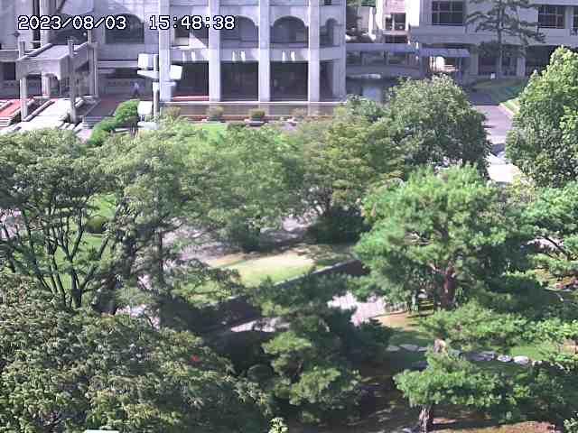 livecam image