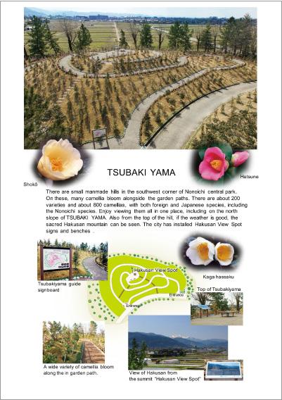 「ののいち椿館&椿山」パンフレット英語版(PDF)