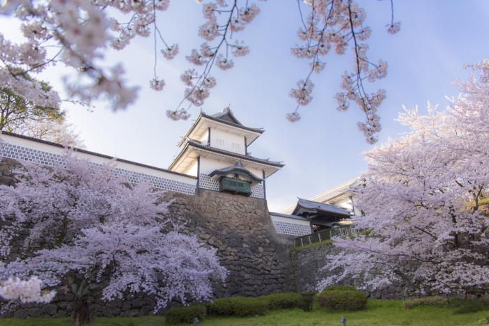 学生による海外誘客チャレンジ事業などで4件が採択された(写真提供:金沢市)