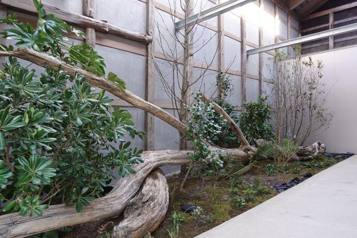 エントランスの庭園。大きな流木は、学生たちが金石の海岸から運び込んだ